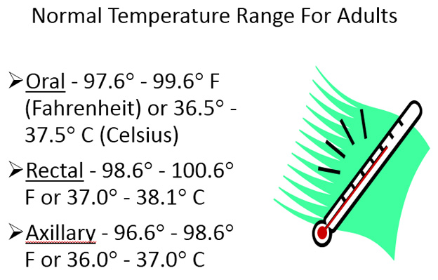 What Is A Normal Temperature For An Adult 41